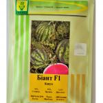Семена  арбуза Биант F1 (Эркен F1)